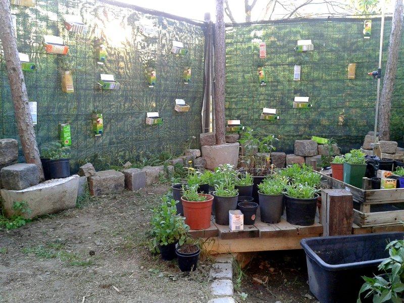 Pflanzenkübel stehen vor einer Wand mit Pflanzen in Tetrapacks