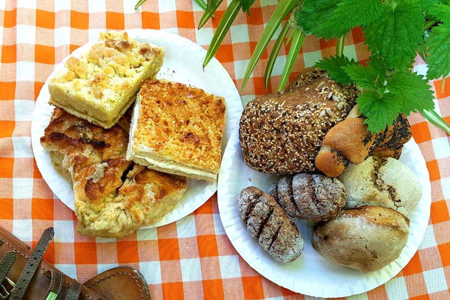 Brötchen und Kuchen auf zwei Papptellern auf einer Picknickdecke
