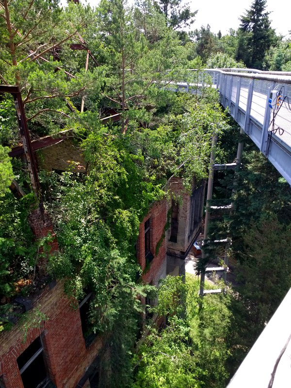 Holzsteg führt durch eine alte Ruine in 20 m Höhe