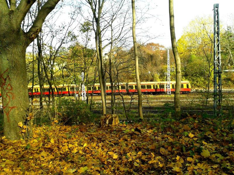 schlitten-fahren-berlin-sbahn