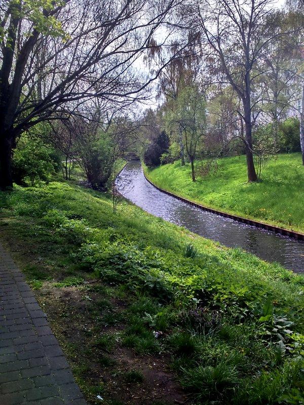 Ein kleiner Bach schlängelt sich durch grüne Stadtwiesen