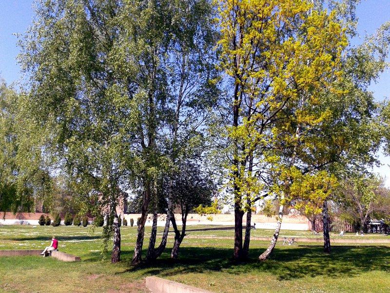 Blick über Bäume und erhöhte Rasenflächen mit Backsteinmauern im Hintergrund